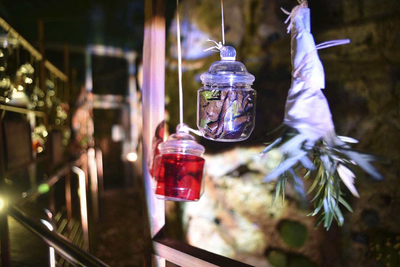 Watching - hanging plants at night